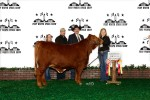 Reserve Grand Champion<br>#61 Shawn Skaggs