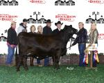 2017 Fort Worth Stock Show