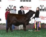 Reserve Champion<br>#53 Sage McManus