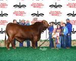 Grand Champion Bull<br>Emmons Ranch